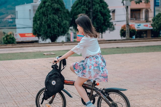 Search Results Web results PESTLE Analysis for Air Pollution Eating Bikes in Poland